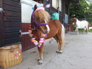 Pony Parties in nottingham from a girls party