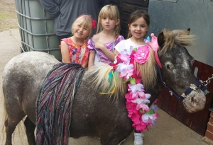 Serenity Kids Party